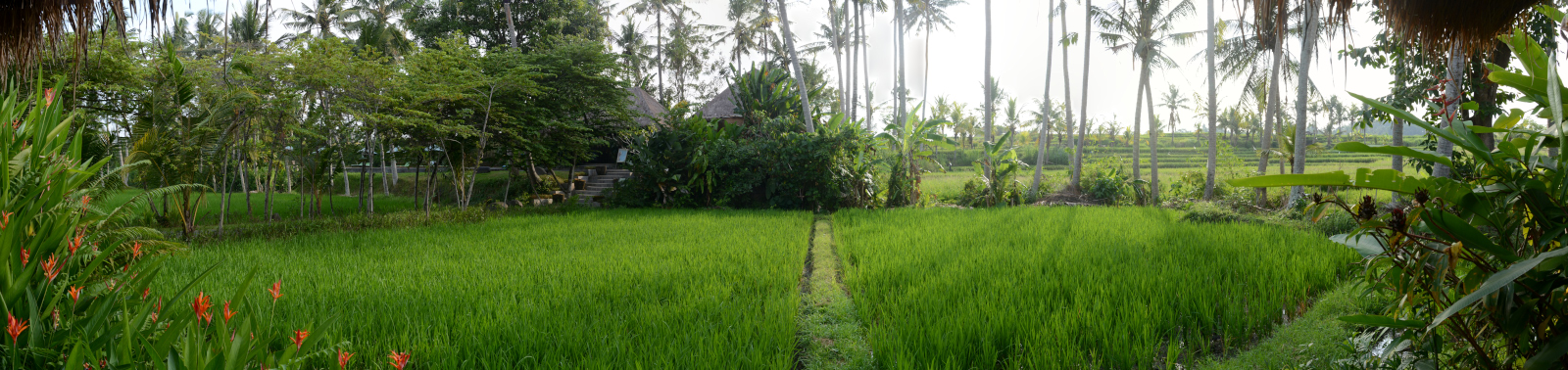 Enjoy Indonesia Tours © Jean-Pierre Pariset