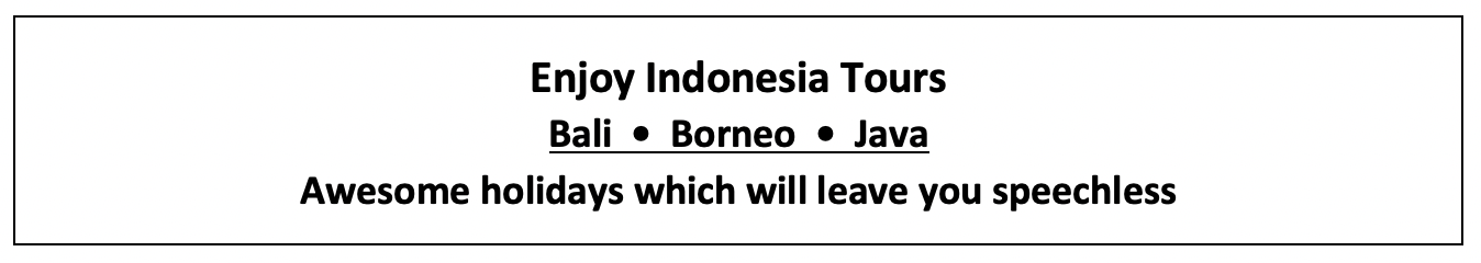 Enjoy Indonesia Tours Home Page