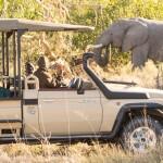 Enjoy Africa Tours 4x4 Safari