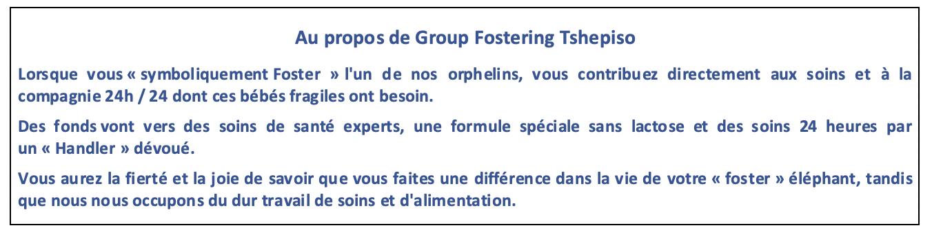 Enjoy Africa Tours Au propos Tshepiso Group Fostering