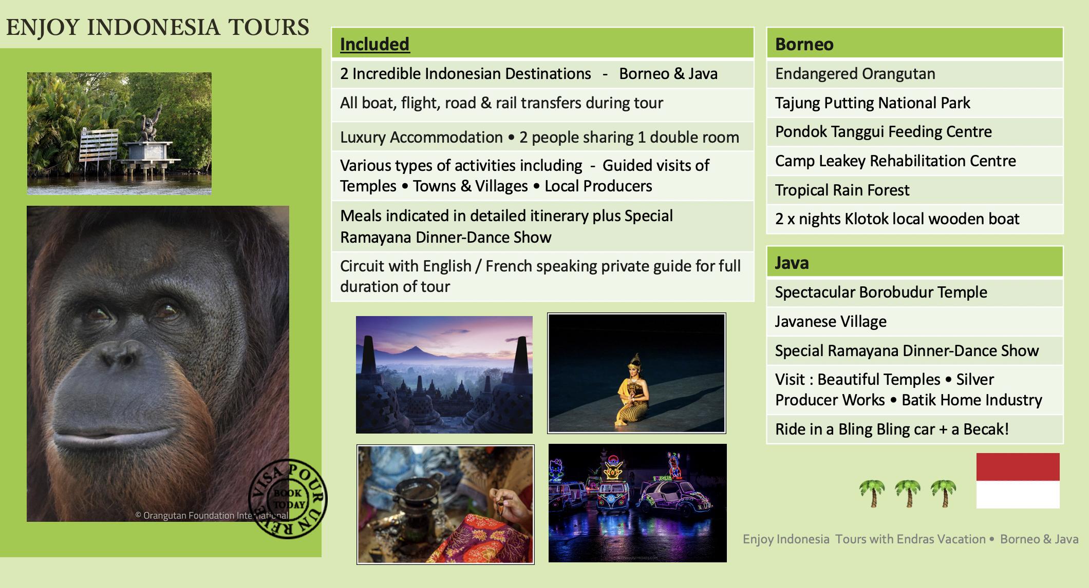 Enjoy Indonesia Tours EV Website Pg 2