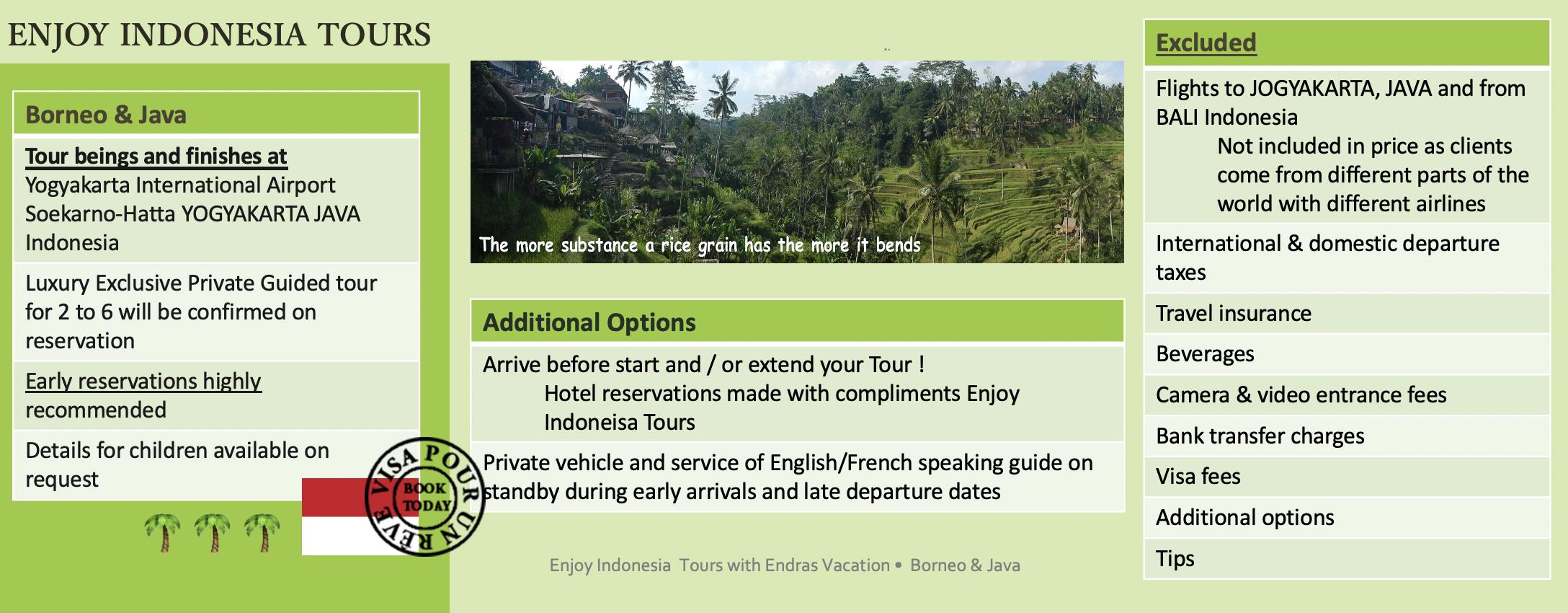 Enjoy Indonesia Tours EV Website Pg 3