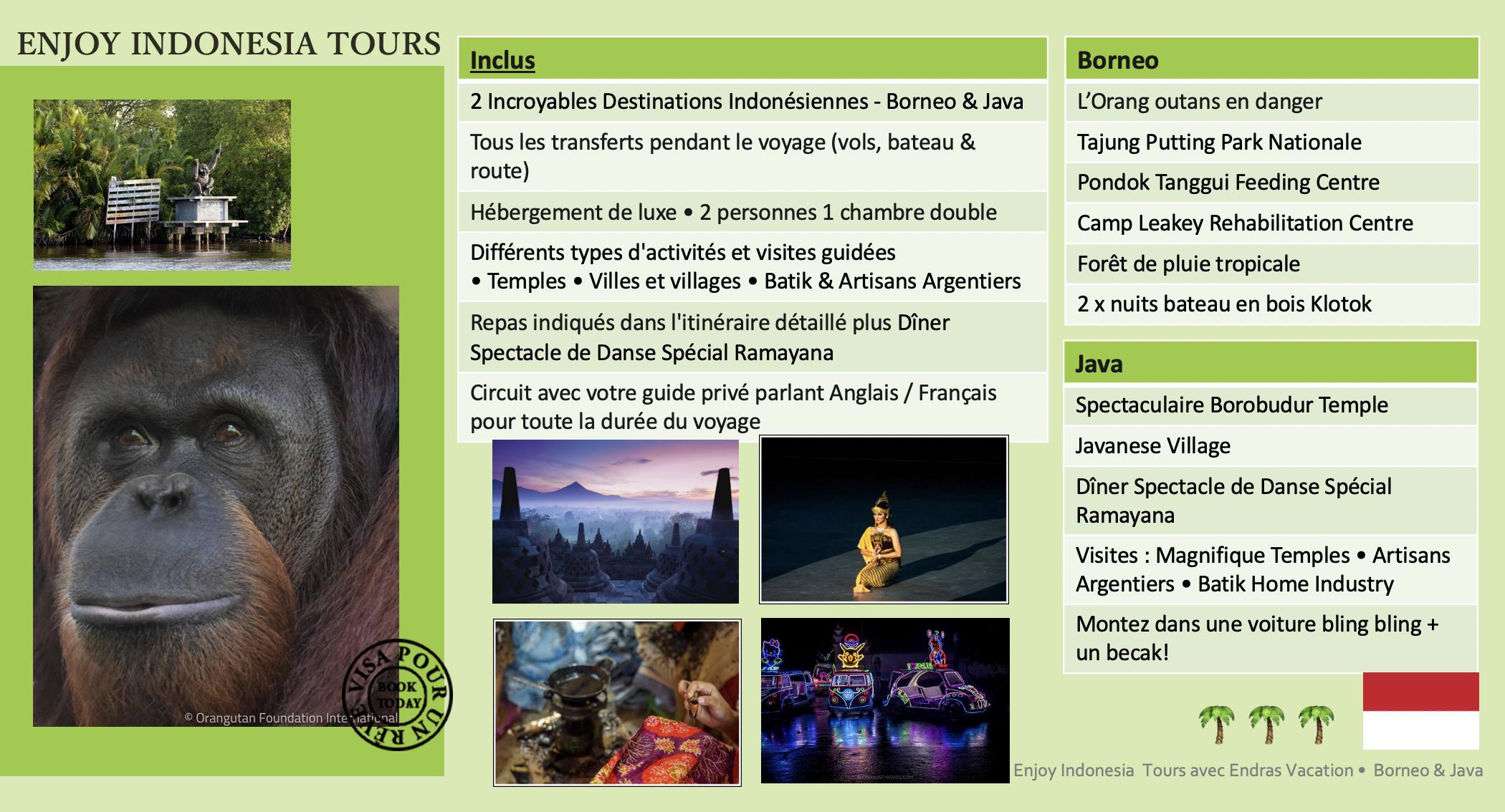 Enjoy Indonesia Tours Borneo Java Pg 2 French