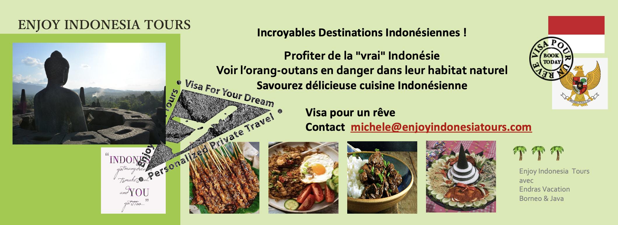 Indonesia Tours Borneo Java Pg 4 French