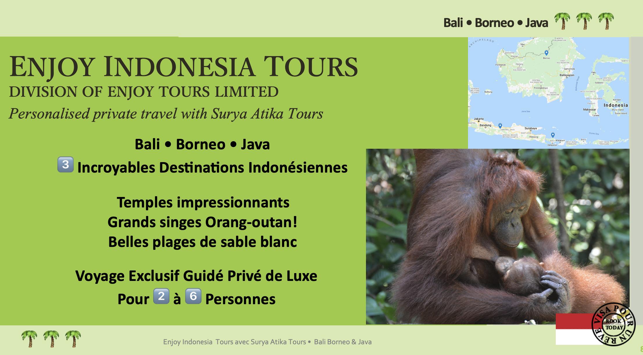 Enjoy Indonesia Tours Bali Borneo Java French Pg 1