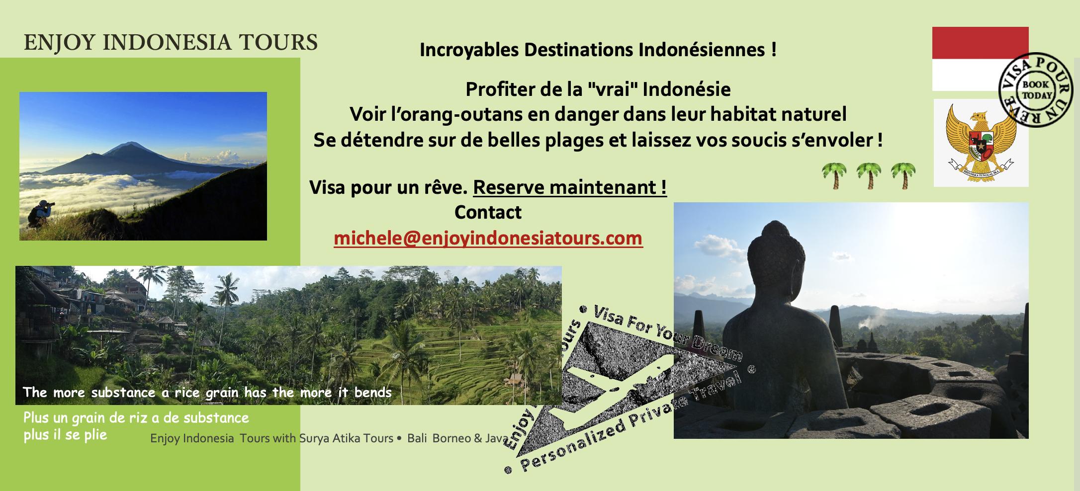 Enjoy Indonesia Tours Bali Borneo Java French Pg 4